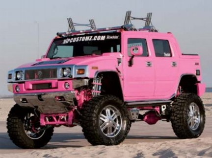pink_hummer_h202.jpg