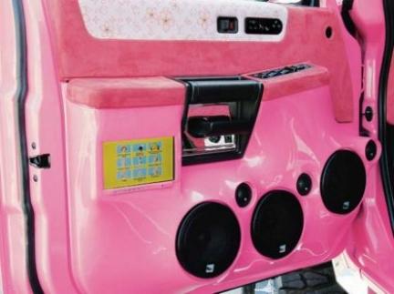 pink_hummer_h206.jpg